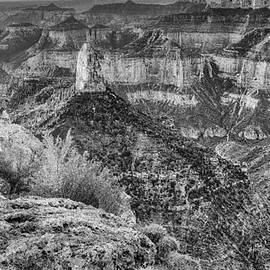 Panorama of Mount Hayden Point Imperial Grand Canyon National Park in Black White - Arizona by Silvio Ligutti