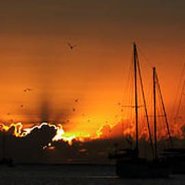 Geoff Childs - Panoramic Marine Splendor - Sunset.