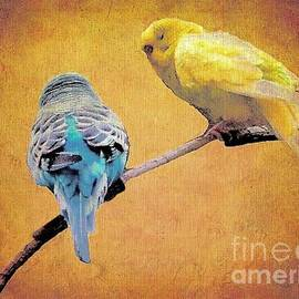 Parakeets in Autumn by Janette Boyd