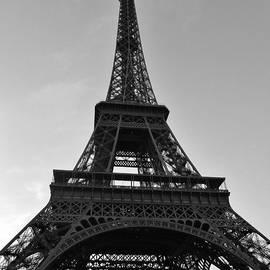Paris's Iconic Eiffel Tower by David Lobos