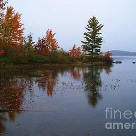 Parker Pond..Before the Rain by Joy Nichols