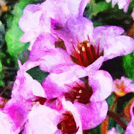 Steve Taylor - Party Flowers