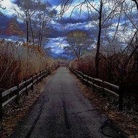 Michael Rucker - Path of Solitude