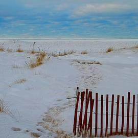Dan Sproul - Winter Beach In Saint Joseph Michigan