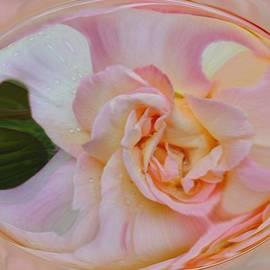 Linda Whiteside - Peace At Sunrise