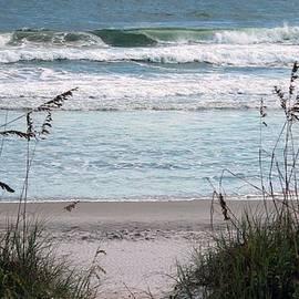 Cynthia Guinn - Peace At The Beach