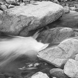 Peaceful Flowing Water in Black and White  by James BO Insogna