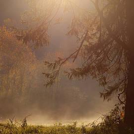 Karol Livote - Peaceful Moments