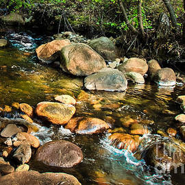 Peaceful Mountain Stream by Robert Bales