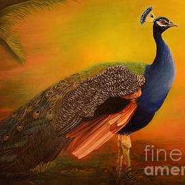 Peacock at sunrise by Zina Stromberg