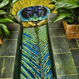 Peacock Feather Pool by Brenda Kean