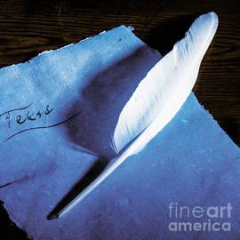 Kim Lessel - Feather Pen Writing