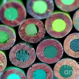Henrik Lehnerer - Pencils Back Green
