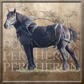 BETHANY CASKEY - Percheron Draft Horse in Harness