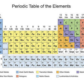 Periodic Table Classification Of Elements by Florian Rodarte