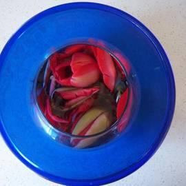 Conor Murphy - Petals in vase in vase