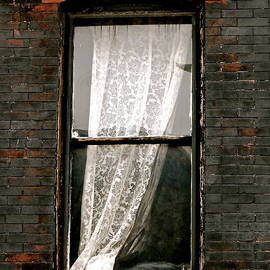 Philly Lace by Ira Shander