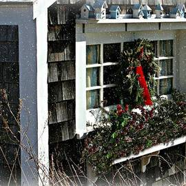 Picture Perfect In Portsmouth NH by Barbara S Nickerson