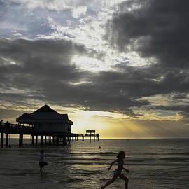 Pier 60 Sunset by Lori  Burrows