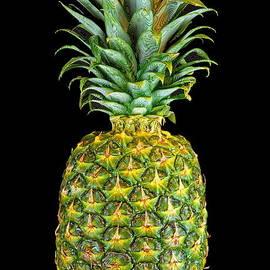Harold Bonacquist - Pineapple