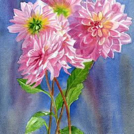 Sharon Freeman - Pink Dahlias with Blue Gray Background