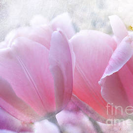 Elaine Manley - Pink
