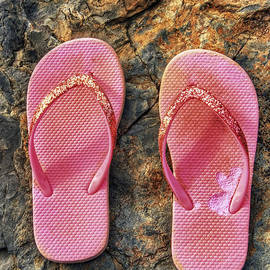 Pink Flip Flops On A Rock by Jason Politte