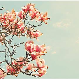 Brooke T Ryan - Pink Magnolia Flowers Against Blue Sky
