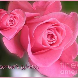 Pink Rose Valentine's Wishes by Joan-Violet Stretch