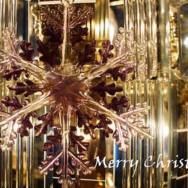 Pink Snowflake by Joanne Smoley