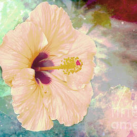 Pink Soft Hibiscus by Beverly Guilliams