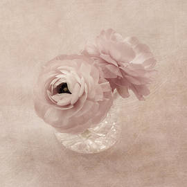 Pink Sweetness by Kim Hojnacki