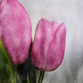 Pink Tulips by Barbara Moignard