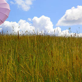 Maggie McCall - Pink Umbrella in the Meadow