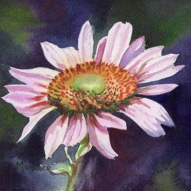 Spencer Meagher - Pink Windflower