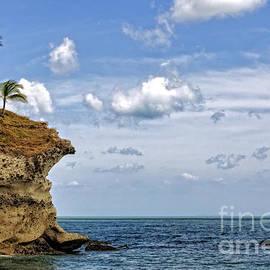 Bob Hislop - Playa Teta Punta Barco