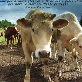 Please Go Vegan by Janice Pariza