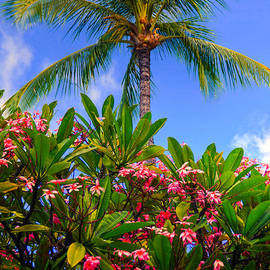 Plumerias Palm by Kelly Wade