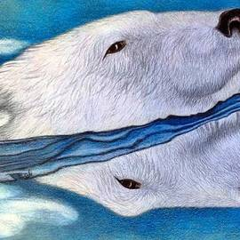 Polar Dip by Jo Prevost