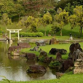 Imran Ahmed - Pond rocks grass and Japanese arch Singapore