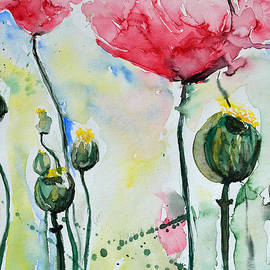 Poppies by Ismeta Gruenwald