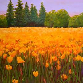 Poppy Fields Forever by Nancy Jolley