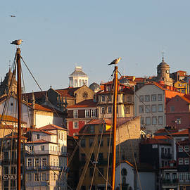 Porto Portugal by Cascade Colors