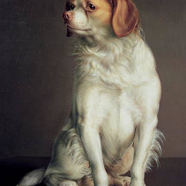 Louis Leopold Boilly - Portrait of a King Charles Spaniel