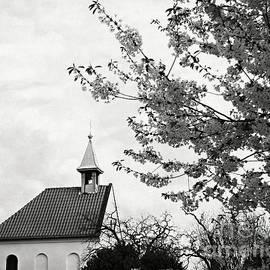 Katerina Vodrazkova - Prague in black and white V