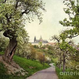 Katerina Vodrazkova - Prague in bloom I