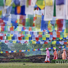 Robert Preston - Prayer flags and novice monks at Lumbini in Nepal