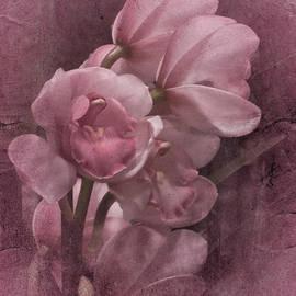Richard Cummings - Pretty in Pink
