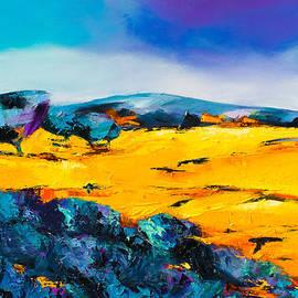 Elise Palmigiani - Provence Colors