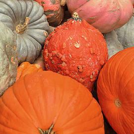 Regina Geoghan - Pumpkin Happy